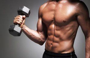 musculação halter abdomen