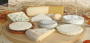 queijos frescos com lactose