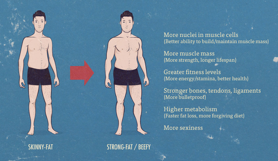 Ectomorph Body Type | How to Eat and Train | ACE Blog